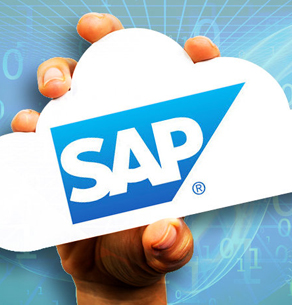 SAP Solution Company in INDIA